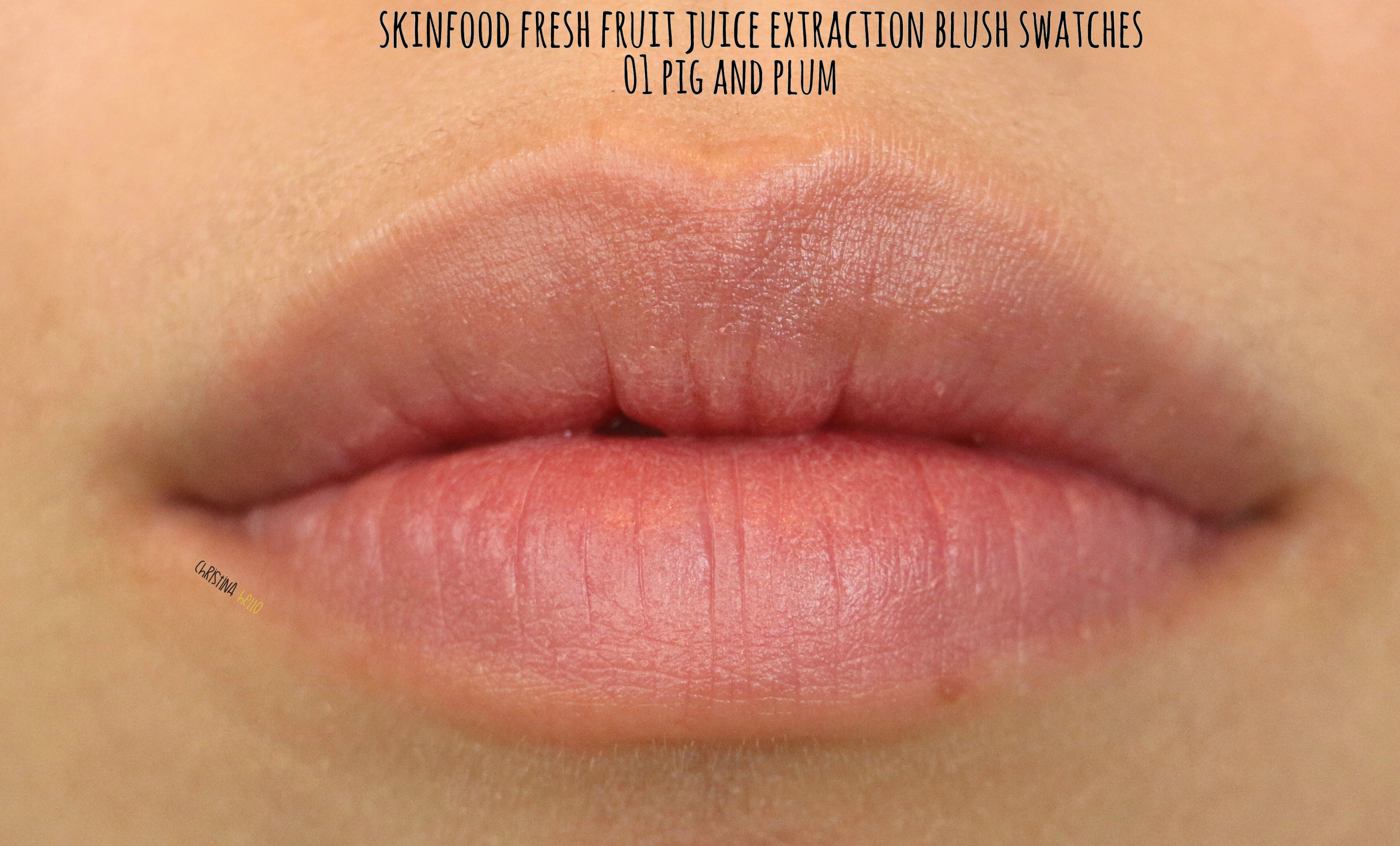 Skinfood Fresh Fruit Juice Extraction Blush Review Swatches Christinahello